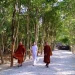 12วัดป่าสันติพุทธาราม (หลวงพ่อสงบ  มนัสสันโต)