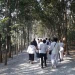 13วัดป่าสันติพุทธาราม (หลวงพ่อสงบ  มนัสสันโต)